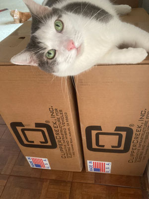 Chex the cat with ClipperCreek boxes Butter the cat in background